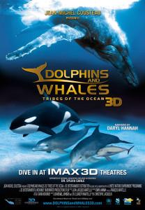 """Plakat von """"Delfine und Wale"""""""