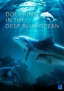 """Plakat von """"Dolphins in the Deep Blue Ocean"""""""