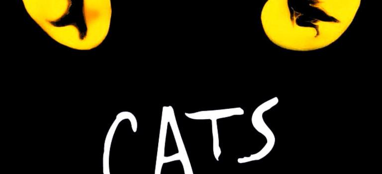Cats – English